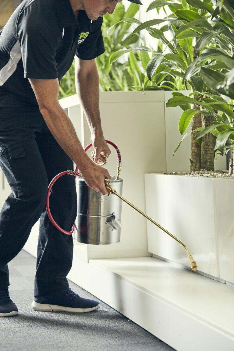 Honey Bees - Pest Control Services | Competitive Pest Control